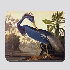 Louisiana Heron Vintage Audubon Bird Mousepad