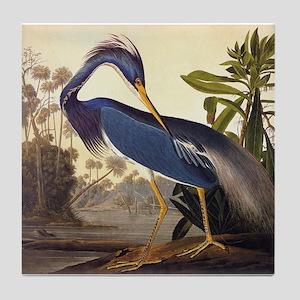Louisiana Heron Vintage Audubon Bird Tile Coaster