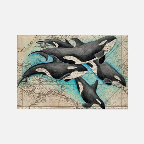 Funny Orca Rectangle Magnet