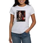 Accolade / Sheltie tri Women's T-Shirt