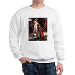 Accolade / Sheltie tri Sweatshirt