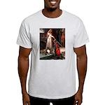 Accolade / Sheltie tri Light T-Shirt