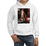 Accolade / Sheltie tri Hooded Sweatshirt