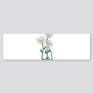Daisy Bumper Sticker