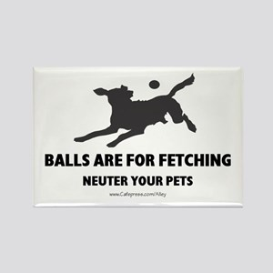 Neuter Your Pets Rectangle Magnet