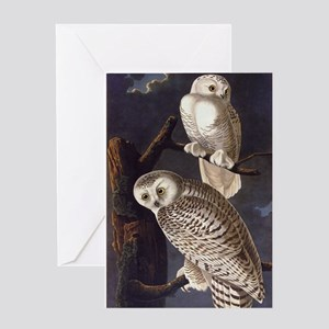 White Snowy Owls Vintage Audubon Wildlife Greeting
