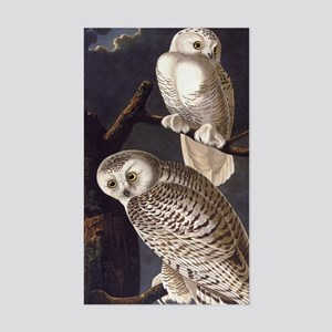 White Snowy Owls Vintage Audubon Wildlife Sticker