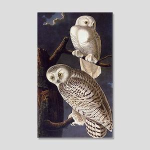 White Snowy Owls Vintage Audubon Wildlife Wall Dec