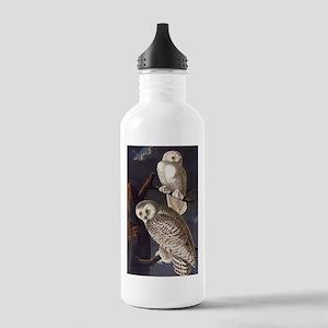 White Snowy Owls Vintage Audubon Wildlife Water Bo