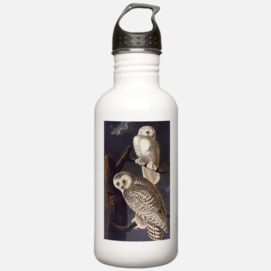 White Snowy Owls Vintage Audubon Wildlife Water Bo