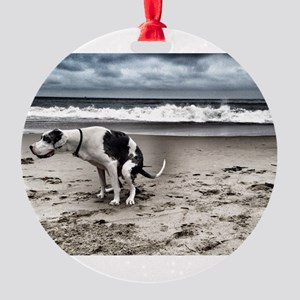 Pooping Pooches Great Dane Round Ornament