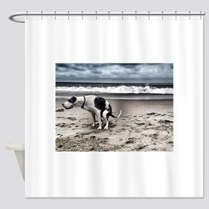 Pooping Pooches Great Dane Shower Curtain