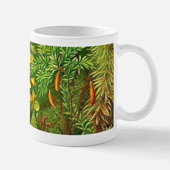 Vintage Plants Decorative Nature Mugs