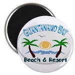 Guantanamo bay Magnet
