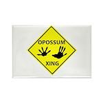 Opossum Crossing Rectangle Magnet (100 pack)