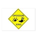 Opossum Crossing Postcards (Package of 8)