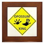 Opossum Crossing Framed Tile