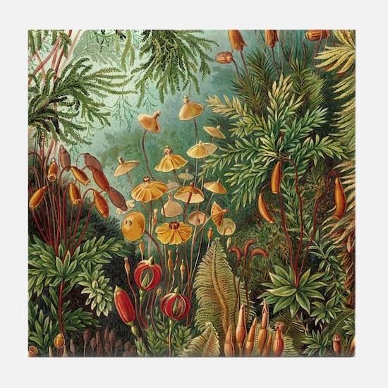 Vintage Plants Decorative Nature Tile Coaster