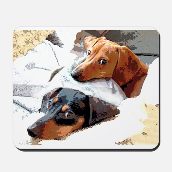 Naptime Doxies Mousepad