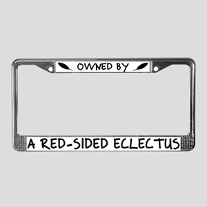 Owned by a Red-Sided Eclectus License Plate Frame