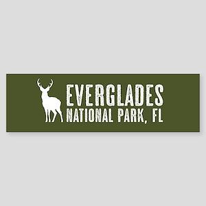 Deer: Everglades, Florida Sticker (Bumper)