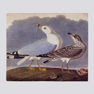 Common Sea Gull Vintage Audubon Birds Throw Blanke