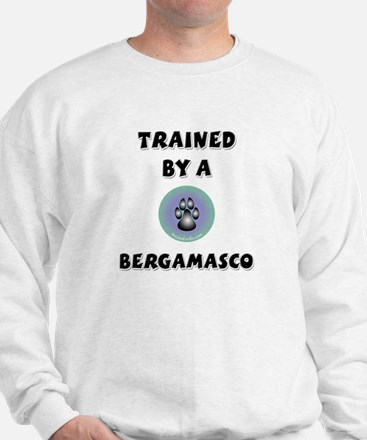 Trained by a Bergamasco Jumper