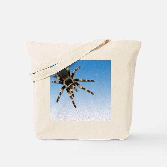 Cute Tarantula Tote Bag