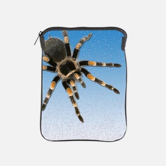 Cute Tarantula iPad Sleeve
