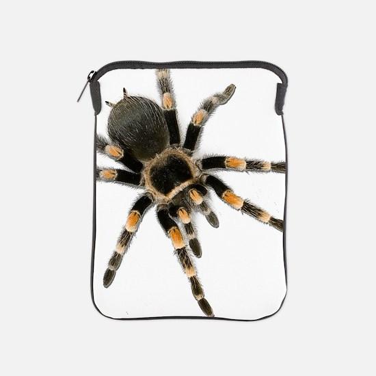 Unique Tarantula iPad Sleeve