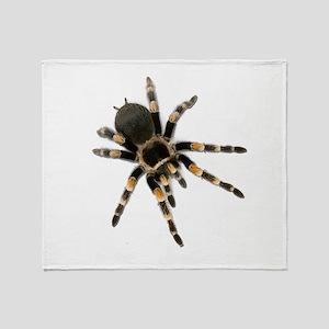 Tarantula Spider Throw Blanket