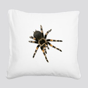 Tarantula Spider Square Canvas Pillow