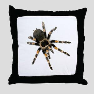 Tarantula Spider Throw Pillow
