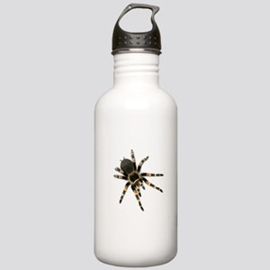 Tarantula Spider Stainless Water Bottle 1.0L