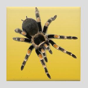 Tarantula Spider Yellow Tile Coaster