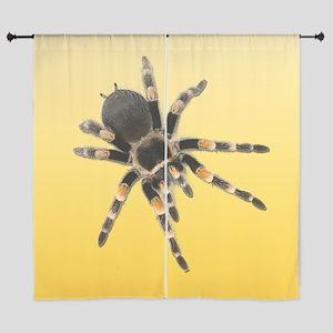 Tarantula Spider Yellow Curtains