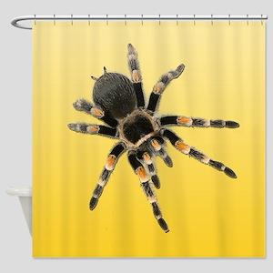 Tarantula Spider Yellow Shower Curtain