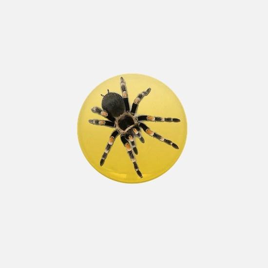 Tarantula Spider Yellow Mini Button