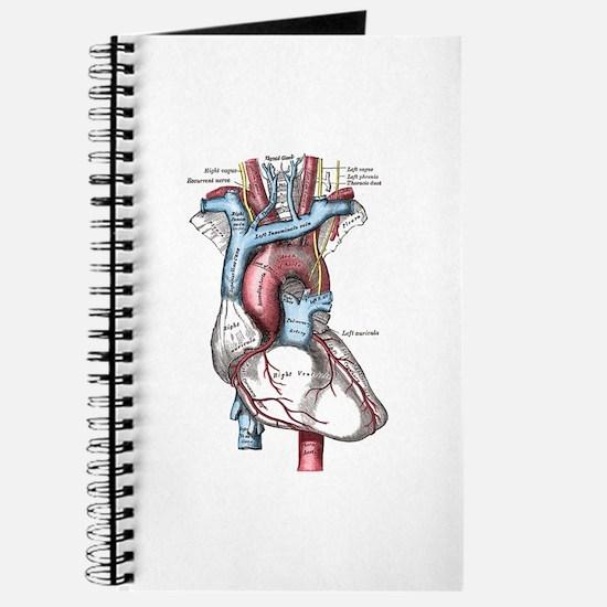 Cardiac Journal