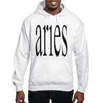 309. aries. . Hooded Sweatshirt