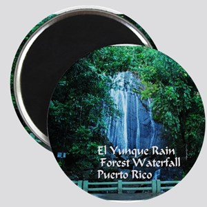 El Yunque waterfall Magnets