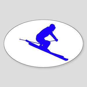 SKI Sticker
