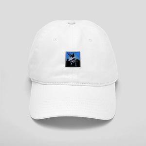336e1cc2a3a Transworld Wakeboard Hats - CafePress