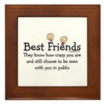 Best Friends Framed Tile