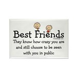 Best Friends Rectangle Magnet (10 pack)