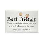 Best Friends Rectangle Magnet (100 pack)