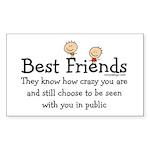 Best Friends Rectangle Sticker