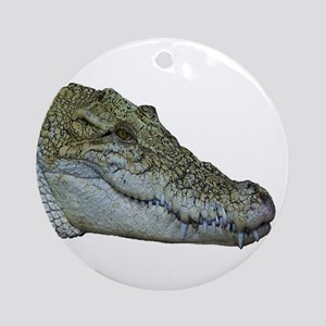 SWAMP Round Ornament