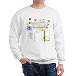 Snooker Math Sweatshirt