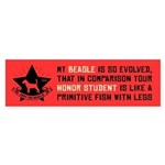 My Beagle Is So Evolved - Bumper Sticker